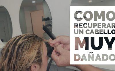 Como recuperar un cabello muy dañado